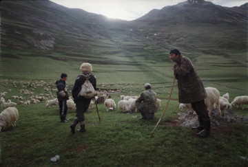 Shepherds in Tusheti