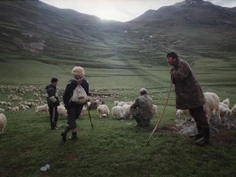 Shepherds in Tusheti